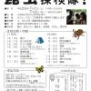 7/1(土)2(日)昆虫探検(事前申込要)